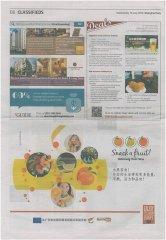 Shanghai-Daily-13.071.jpg